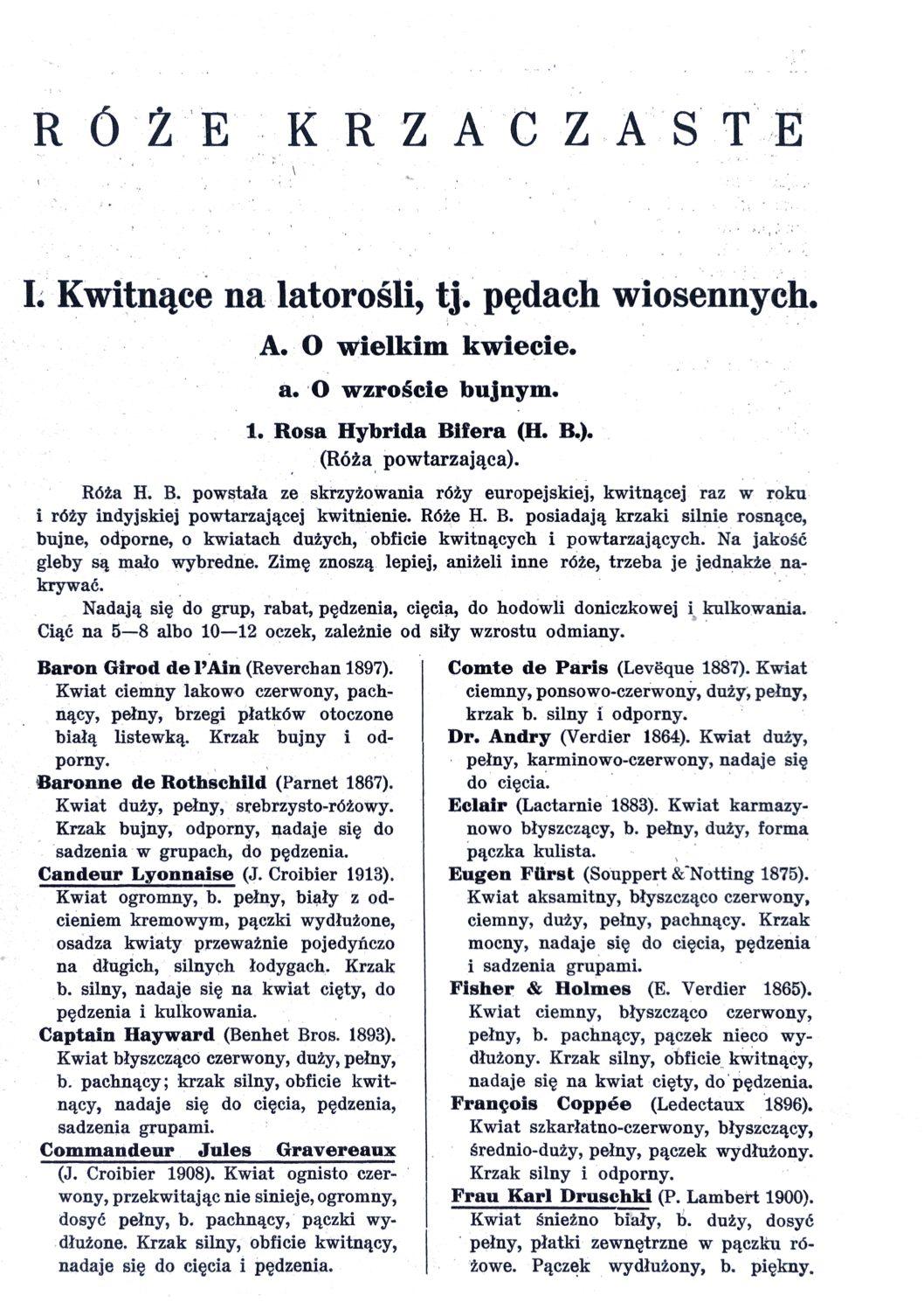 Cennik szkółek ogrodniczych Stanisława Dzieduszyckiego 11