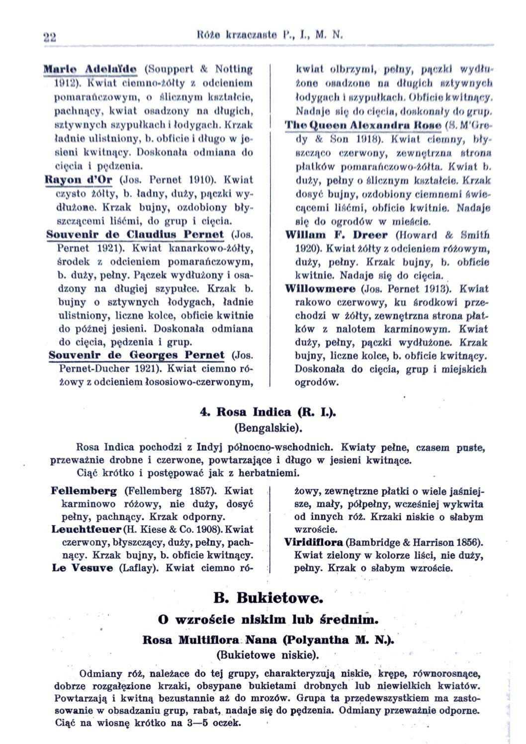 Cennik szkółek ogrodniczych Stanisława Dzieduszyckiego 22