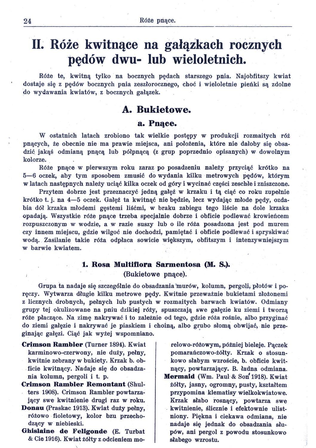 Cennik szkółek ogrodniczych Stanisława Dzieduszyckiego 24